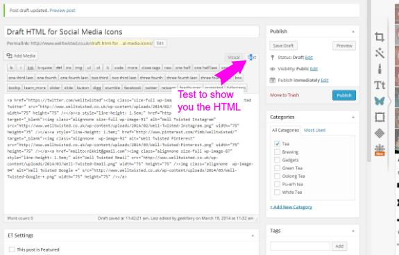Wordpress ad media social icons