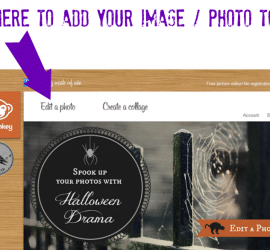 Easy resizing of an image or photo with free picmonkey