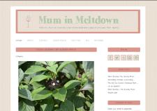 Mum in Meltdown