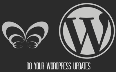 Do your WordPress updates